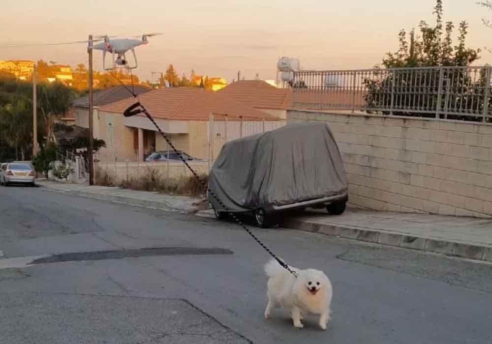 De quarentena, homem usa drone para passear com cachorro
