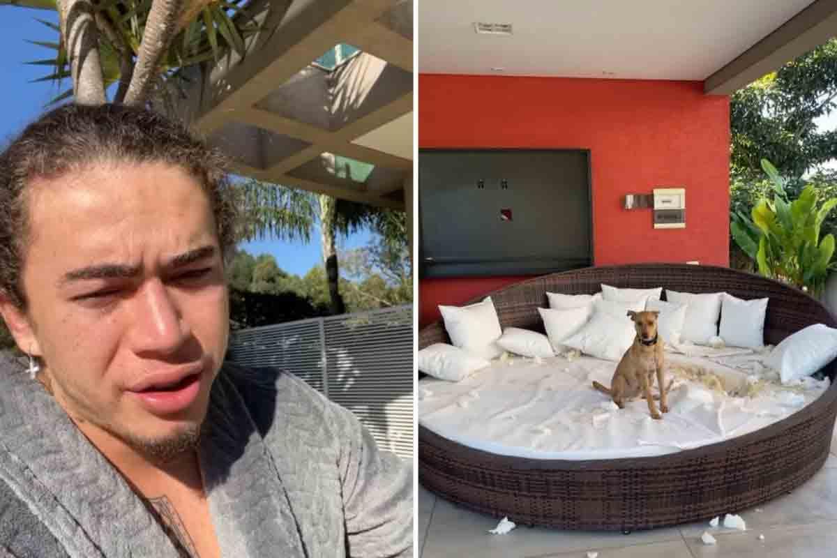 """Cachorro de Whindersson destrói sofá e humorista se diverte: """"Meliante"""" (Foto: Reprodução/Instagram)"""